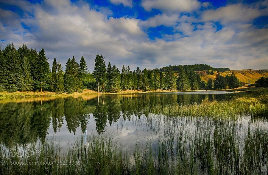 #photography Reflections by HildaMurray https://t.co/F4Tb2Cam3O #followme #photography