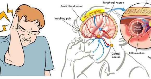 24++ Medicine per mal di testa trends