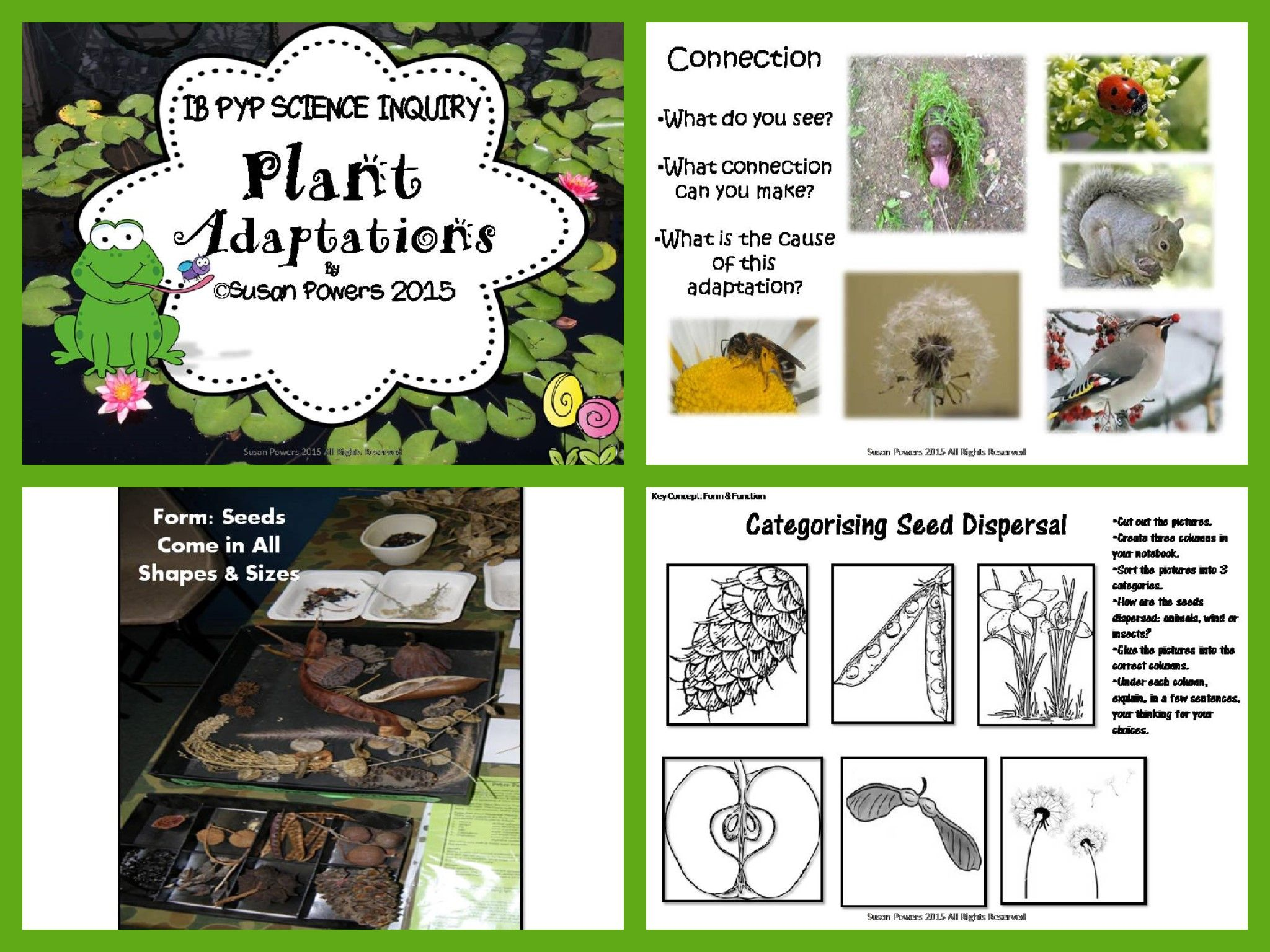 Plant Adaptations Educational Videos | WatchKnowLearn