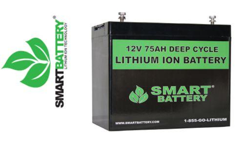 Marine lithium ion batteries