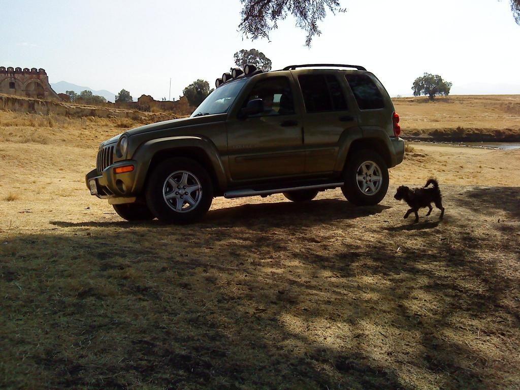 Mascota jeep