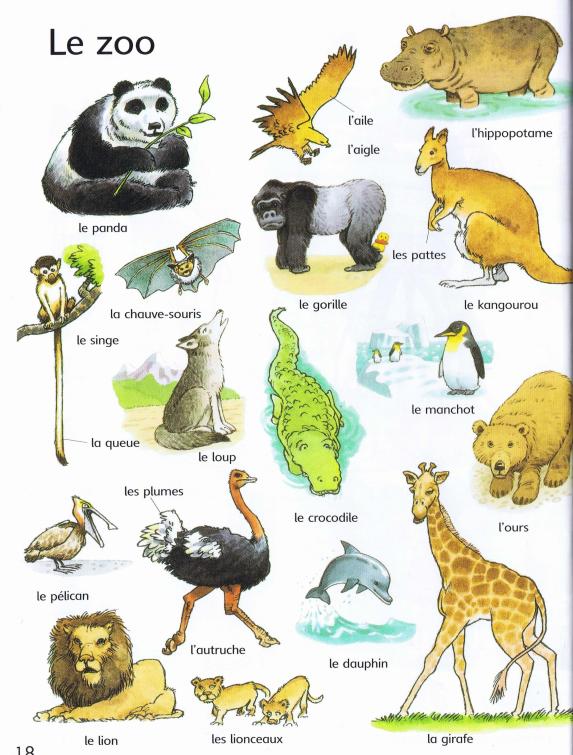 Resultado de imagen para vocabulaire les animaux du zoo