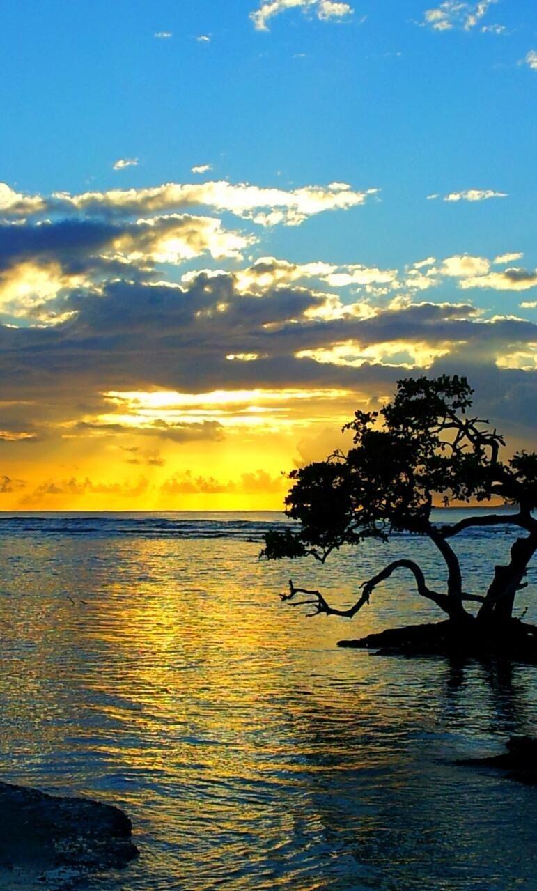 ☀Mi bello Puerto Rico☀ Island in the Sun Gary Trotman