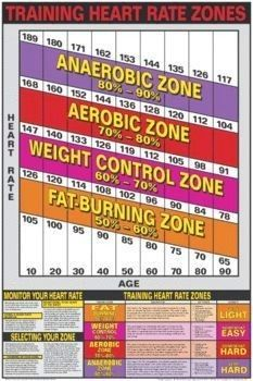 Training Heart Rate Target Poster Charts Body Building Charts