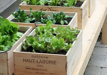DIY Outdoor Decorating Ideas: Wine Box Garden: This sweet little wine box garden by LLH Designs is picture perfect.