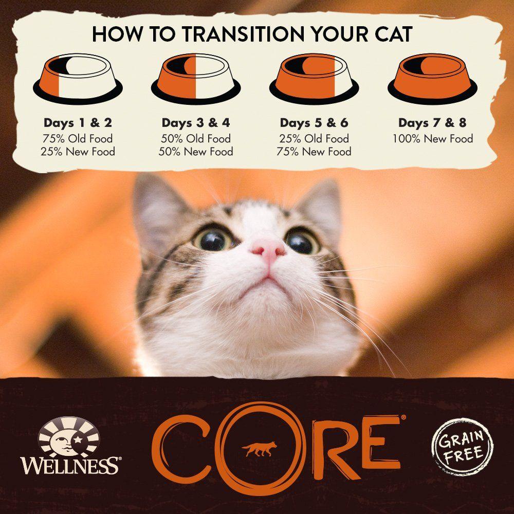 Wellness Core® Air Dried Natural Grain Free Dry Cat Food