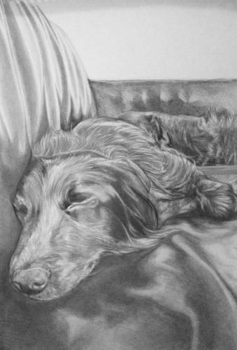 Sleeping doggy by AnnieH - Use the 'Create Similar' button to commission an artist to create your own artwork.