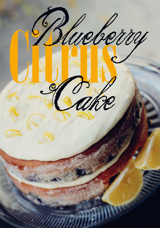 blueberry-citrus-cake from pride in photos