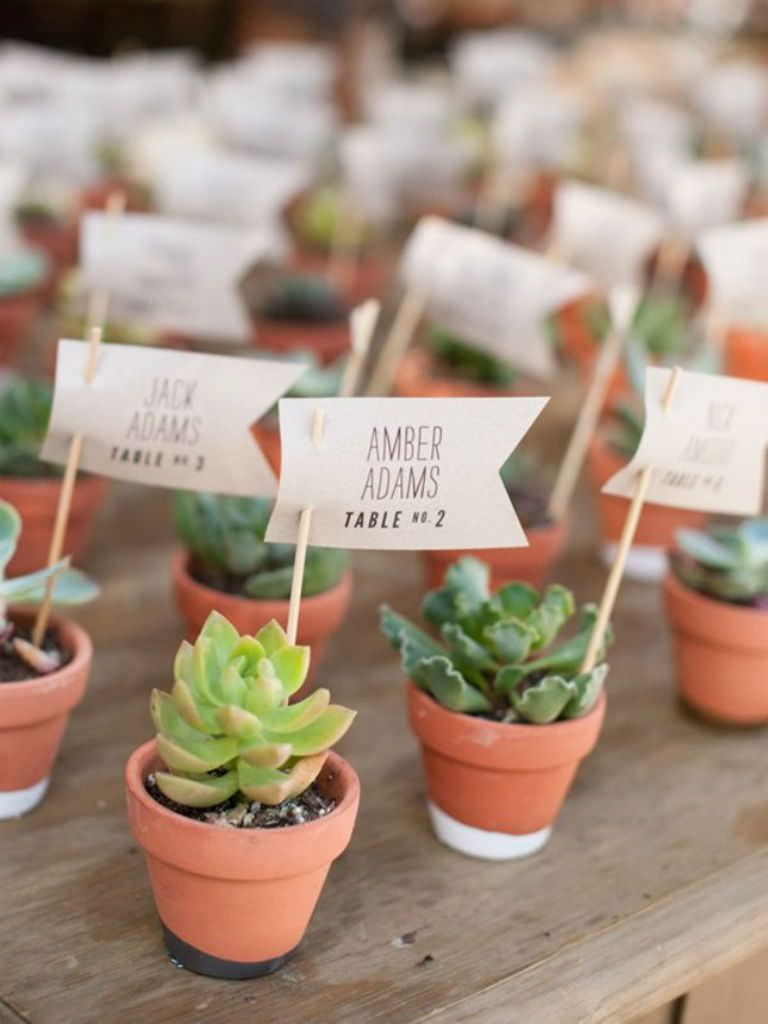 10 Creative Ways To Use Succulents In Your Wedding World Of Succulents Simple Wedding Favors Calamigos Ranch Wedding Unique Wedding Favors