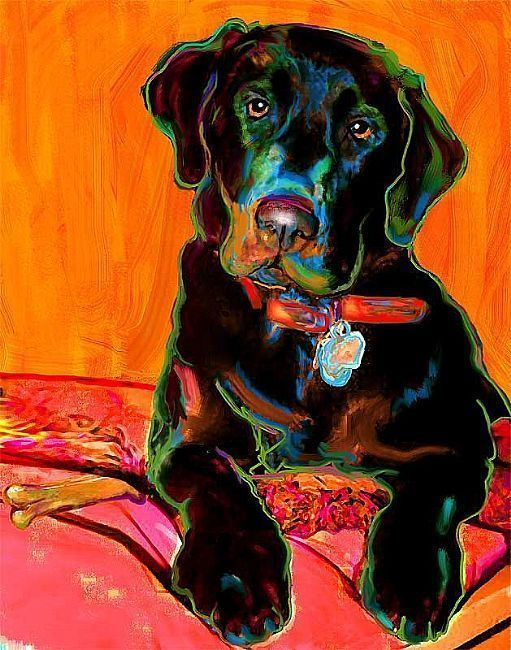 Rebecca Collins Kresby V Roku 2018 Pinterest Dog Art Art A