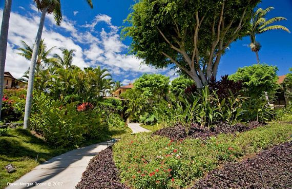 Turquoise Cove G301- Opulent Beachfront Estate with Sumptuous Decors Jewel of Maui  (14)
