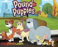 Pound Puppies Pound Puppies Oyunu Pound Puppies Oyna Pound Puppies Oyun Minika Oyunlari Oyun Cizgifilmin Com Yavru Kopek Oyun Cizgi Film