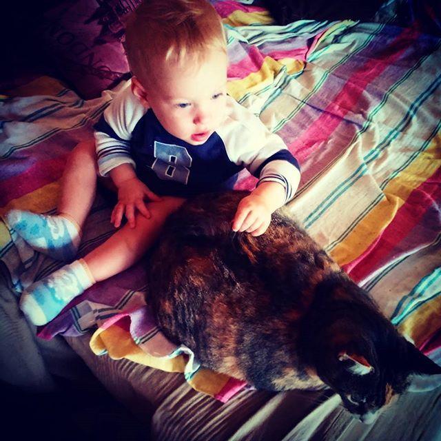 Moje dzieci 😍 #kidandkitty #instaboy #instababy #son #instacat #cat #broandsis #family #love #TimandLilu