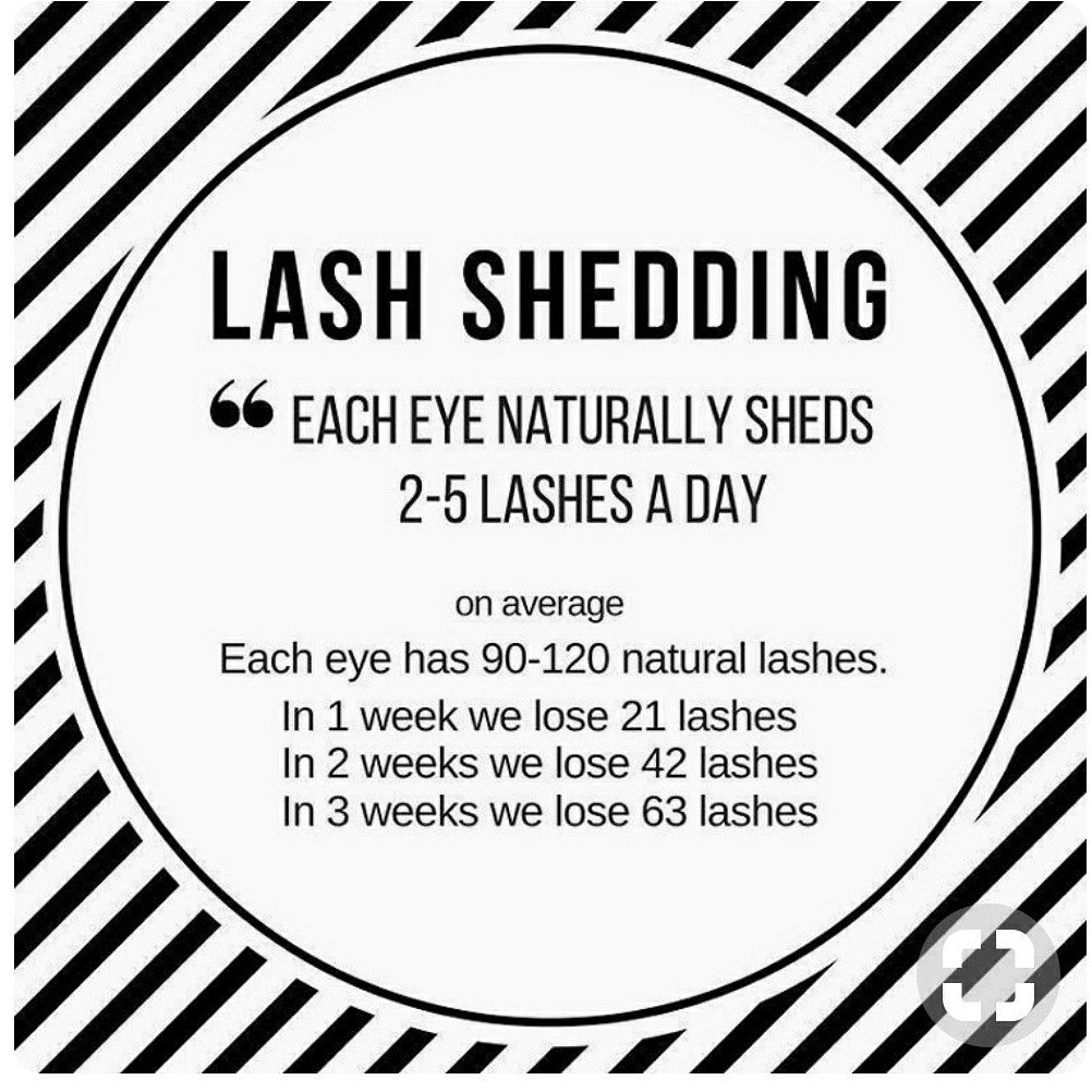 Susys mobile lashes las vegas nv https//susysspa.wixsite