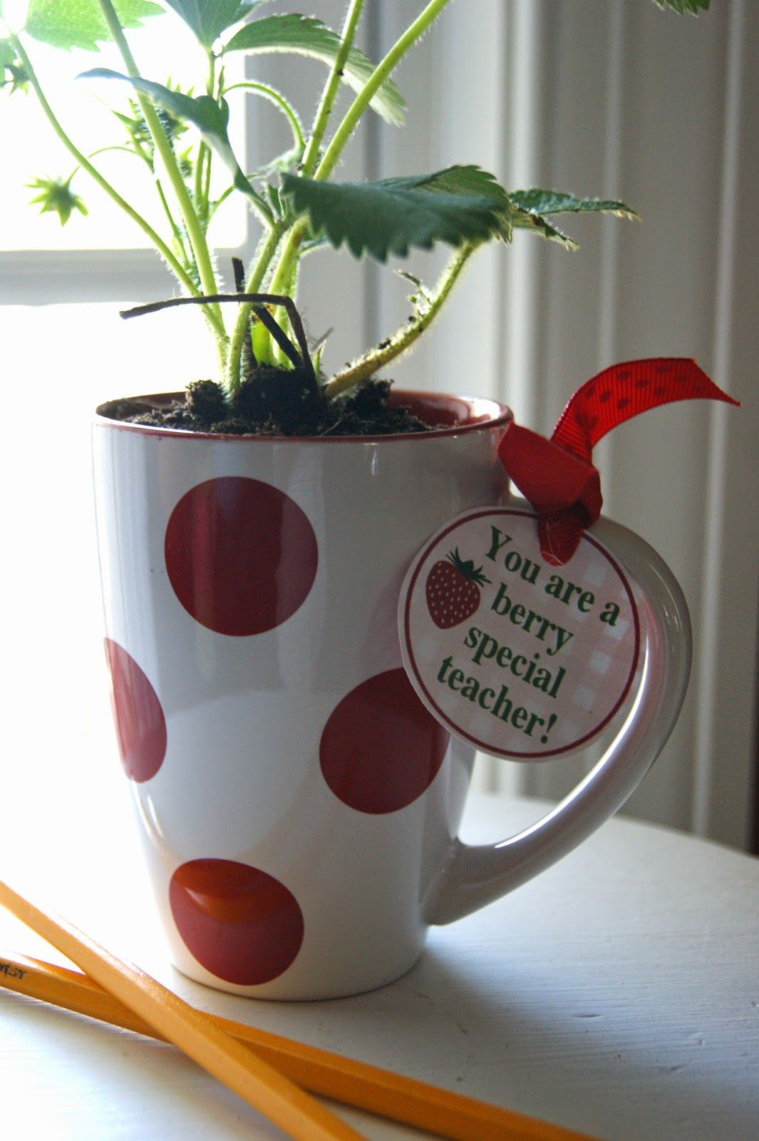 The Life of a Craft Crazed Mom: Strawberry Plant Teacher Gift ...