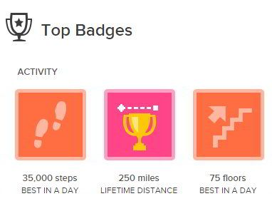 Don't need no stinkin badges.... #Fitbit