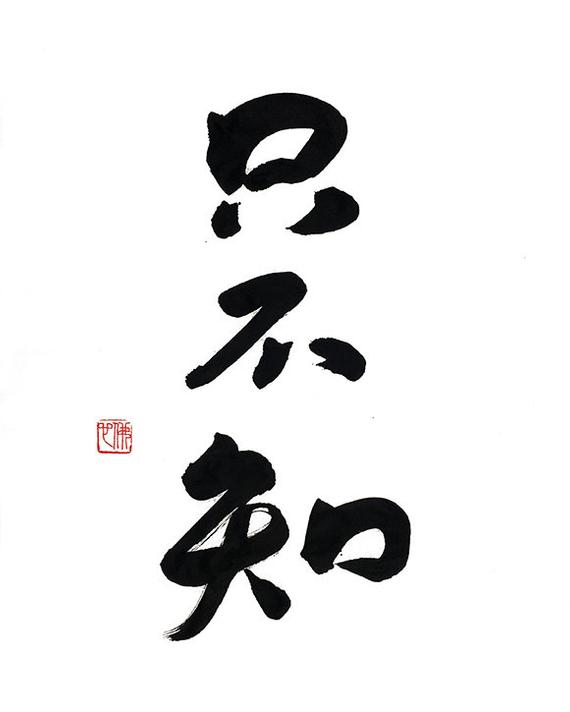4dccda572 Only Don't Know - Original Chinese Calligraphy - 14x17 - Art - Japanese Art  - Wall Decor - B&W - Zen