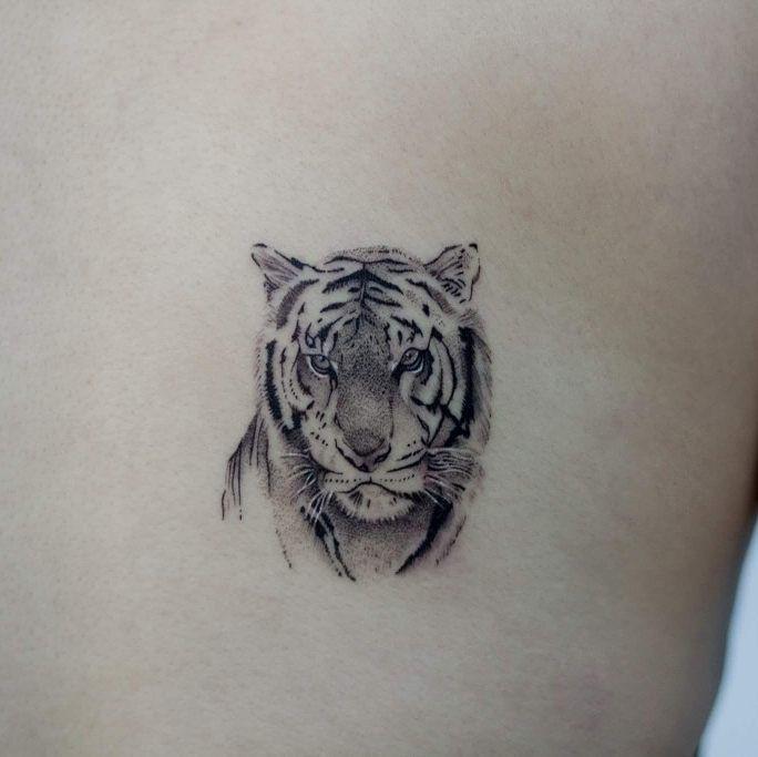 Pin By Florencia On Ttoo Tiger Tattoo Small Leopard Tattoos Tiger Tattoo