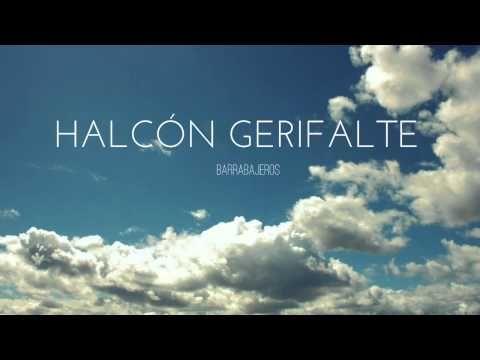 Halcon Gerifalte - Barrabajeros - http://www.nopasc.org/halcon-gerifalte-barrabajeros/