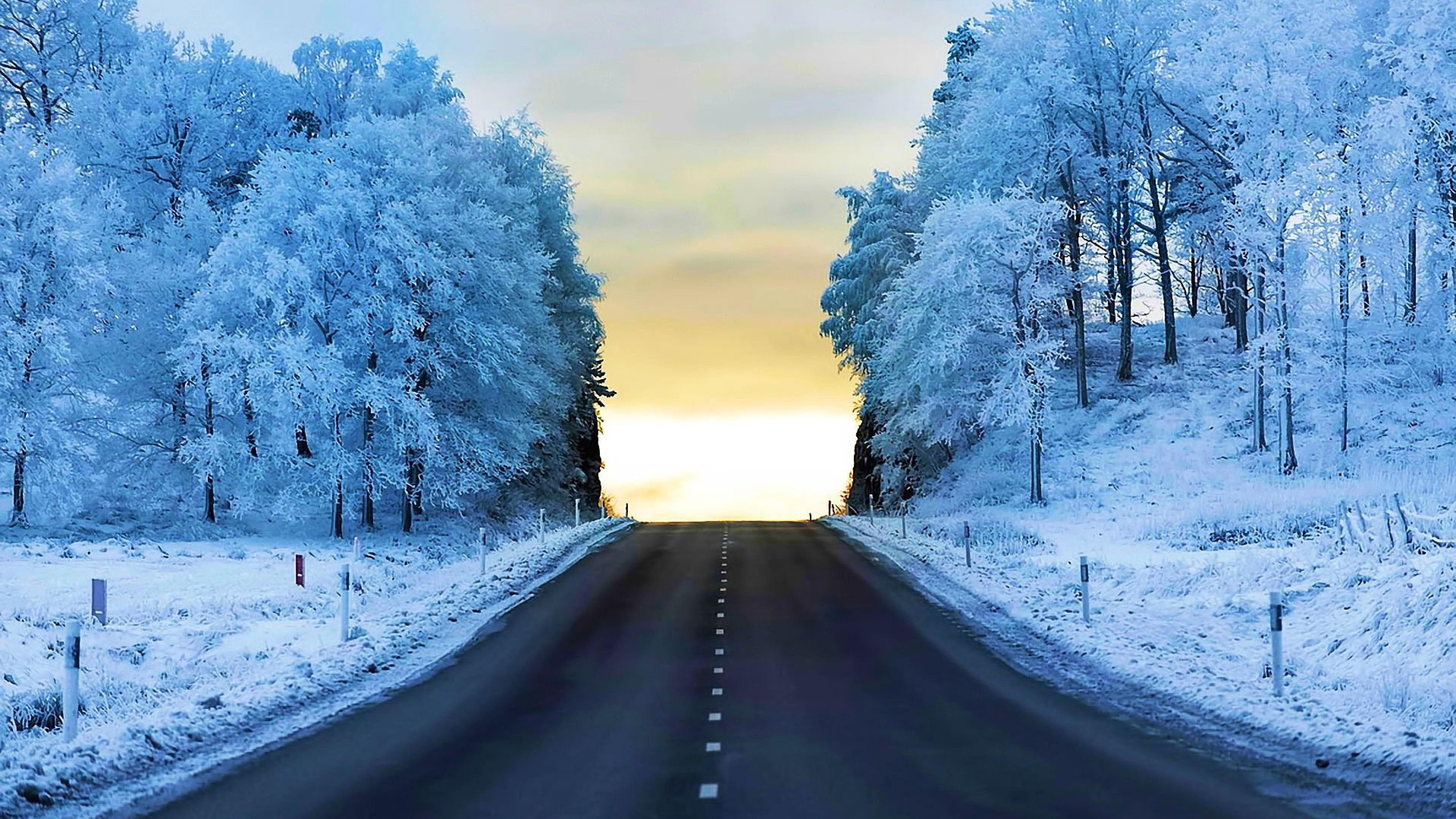 life ice cold crystal frozen snow winter solid