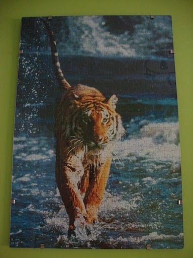 tigre 1000 piezas