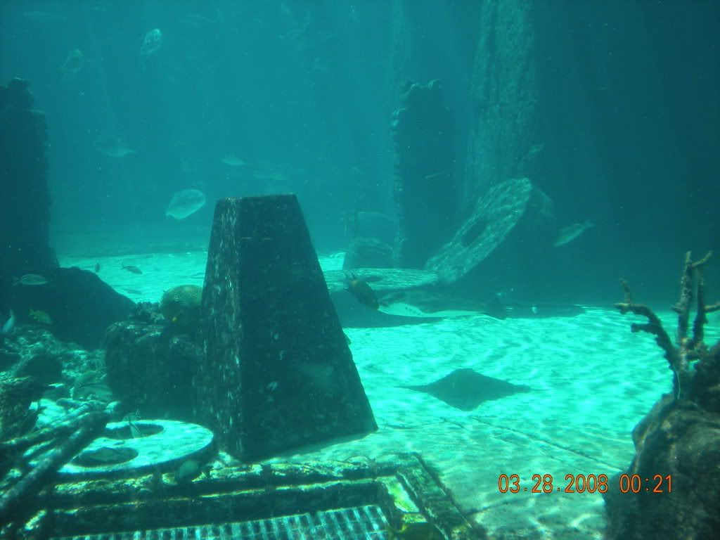 Atlantis The Lost City Underwater Atlantic Underwater City Underwater City Underwater Lost City Of Atlantis