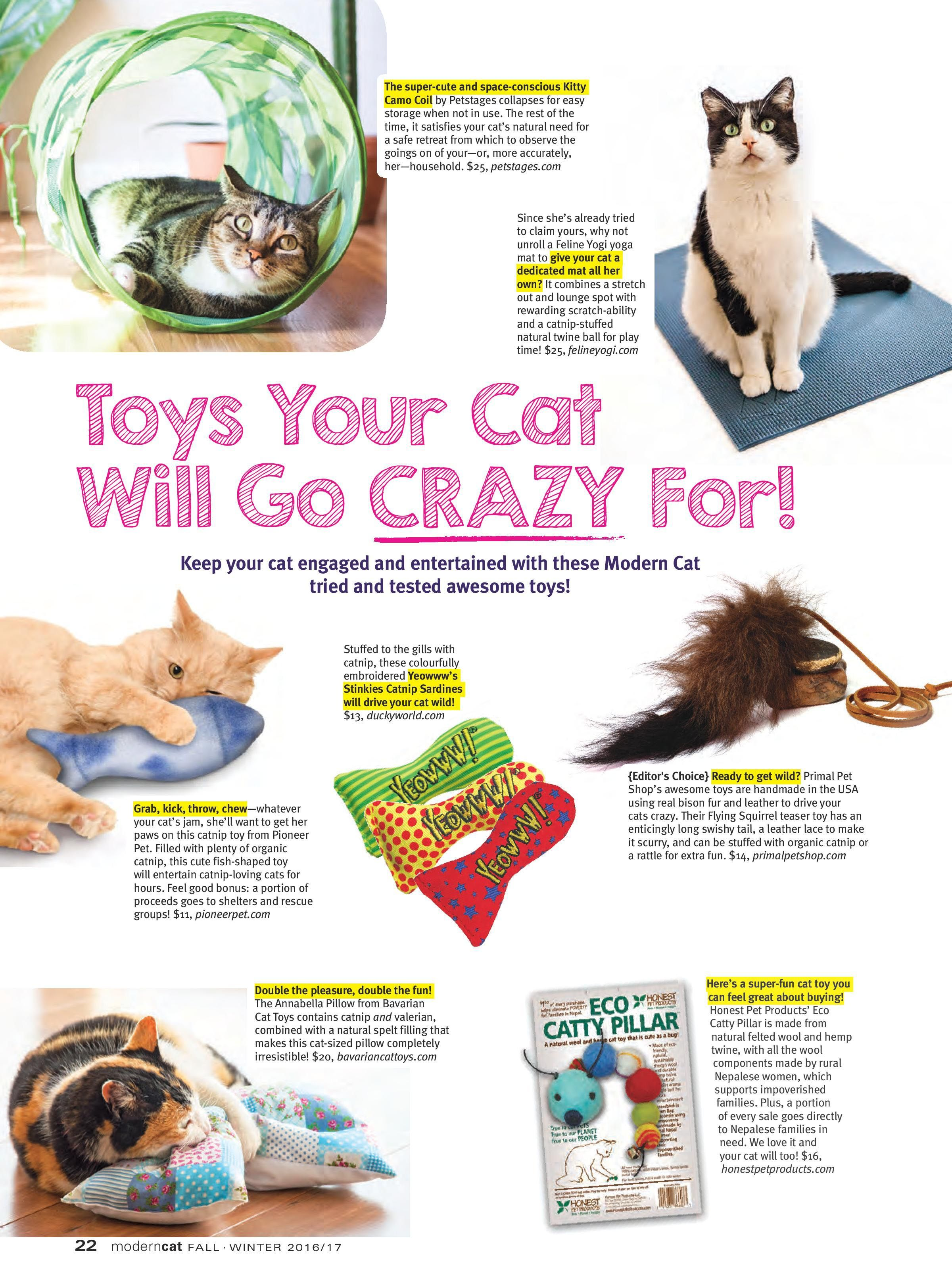 Now Named The Ecstatic Cat Our Buffalo Flying Squirrel Was Featured In Modern Cat Magazine Cat Toys Handmade Cat Toys Cats