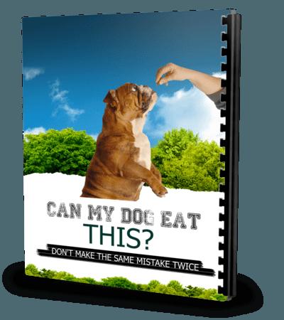 Can My Dog Eat This? German shepherd dogs, Cavachon