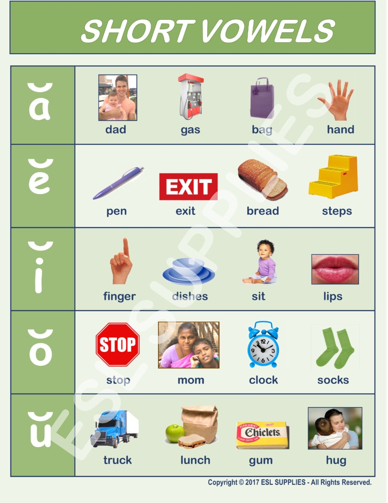 Teach All Five Short Vowels With Essential English Words