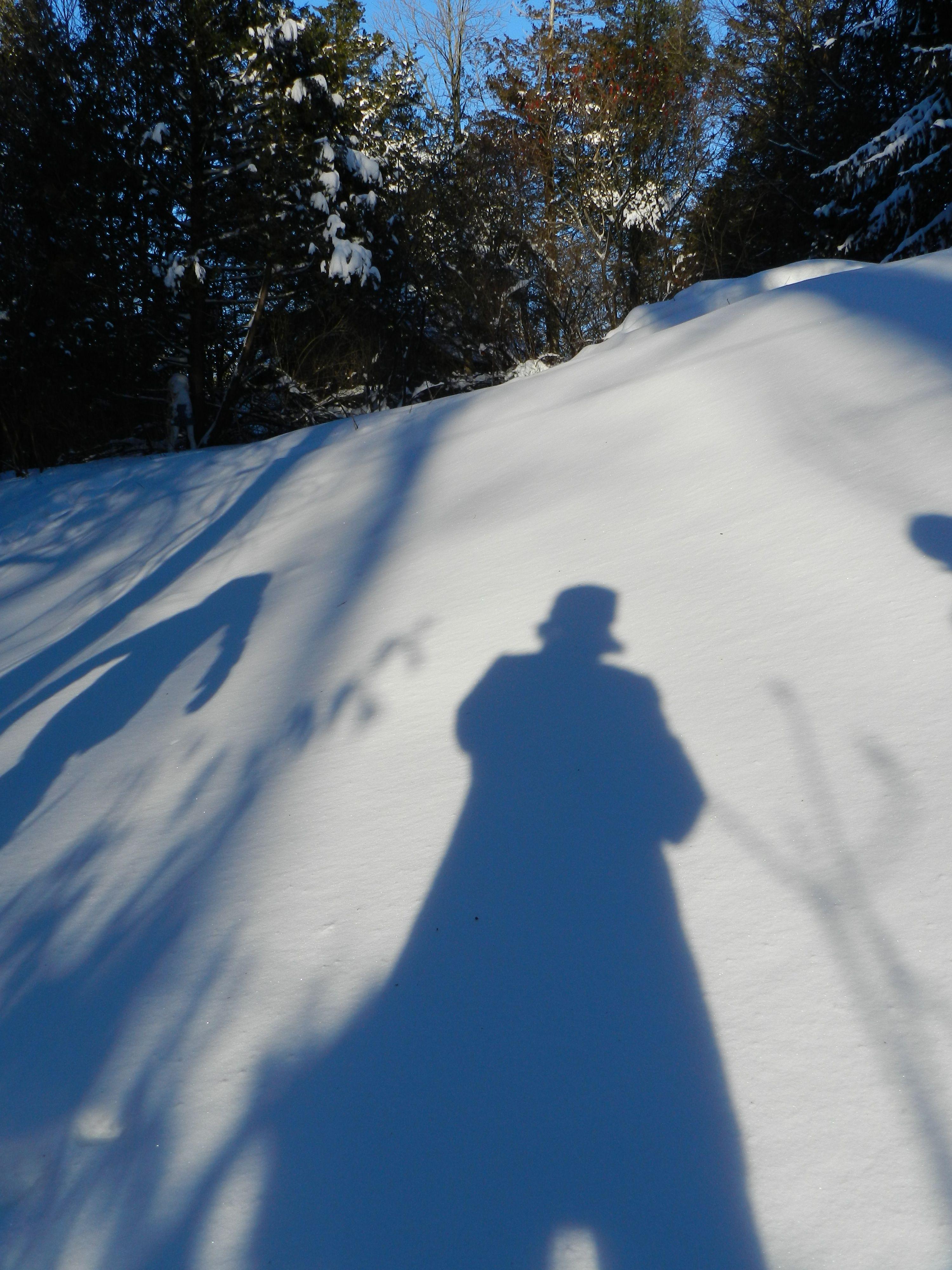 blue shadows on snow