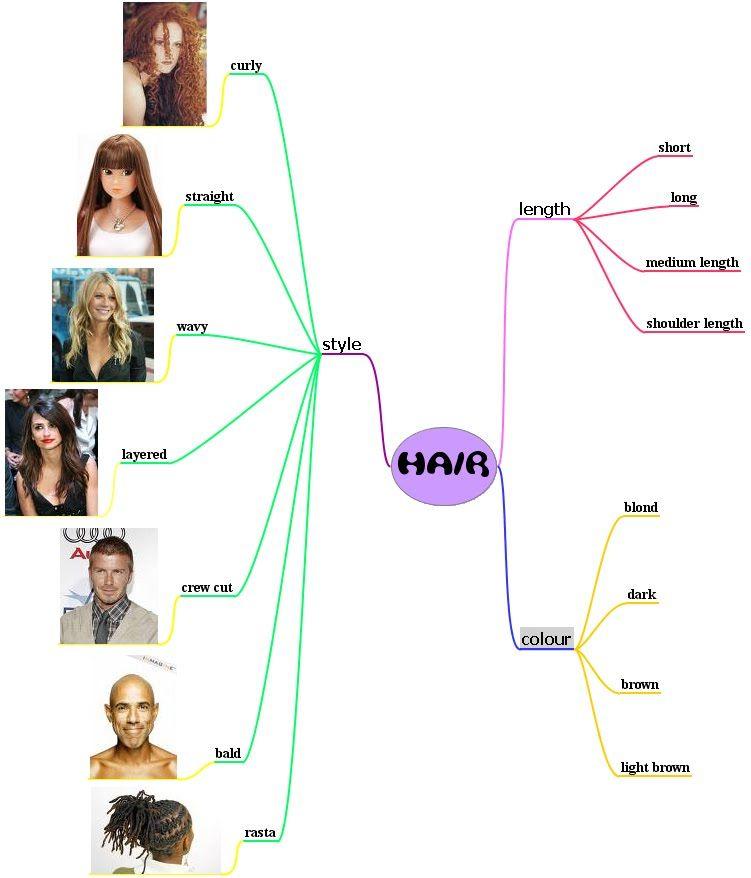 Hair Vocabulary English - Cerca Amb Google