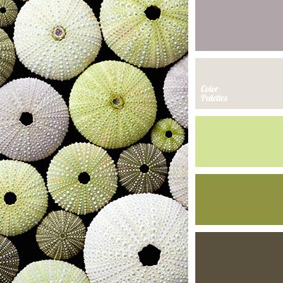 Color Palette 2038