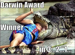 Darwin Award Darwin Awards Idiocracy Pinterest Darwin - 22 people surely win darwin award