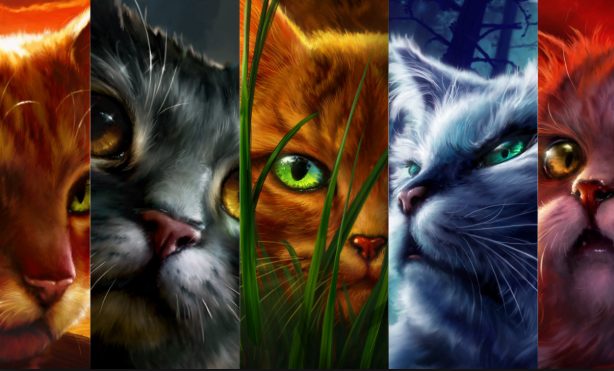 Warriors all day everyday (With images) Warrior cats