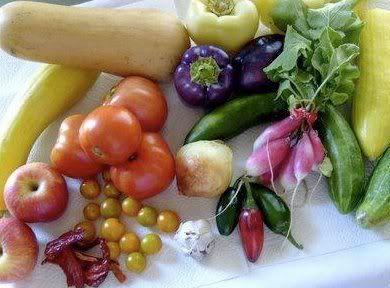 Yogi Food Cleanse  http://wellness.nicolepresents.com/