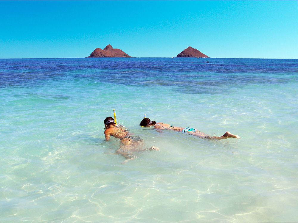 Beach Snorkeling Hawaii Kailua Adventures