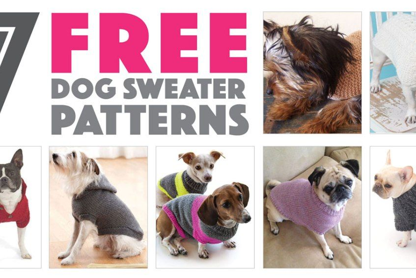 Seven Free Dog Sweater Patterns | Knitting | Pinterest | Ropa para ...