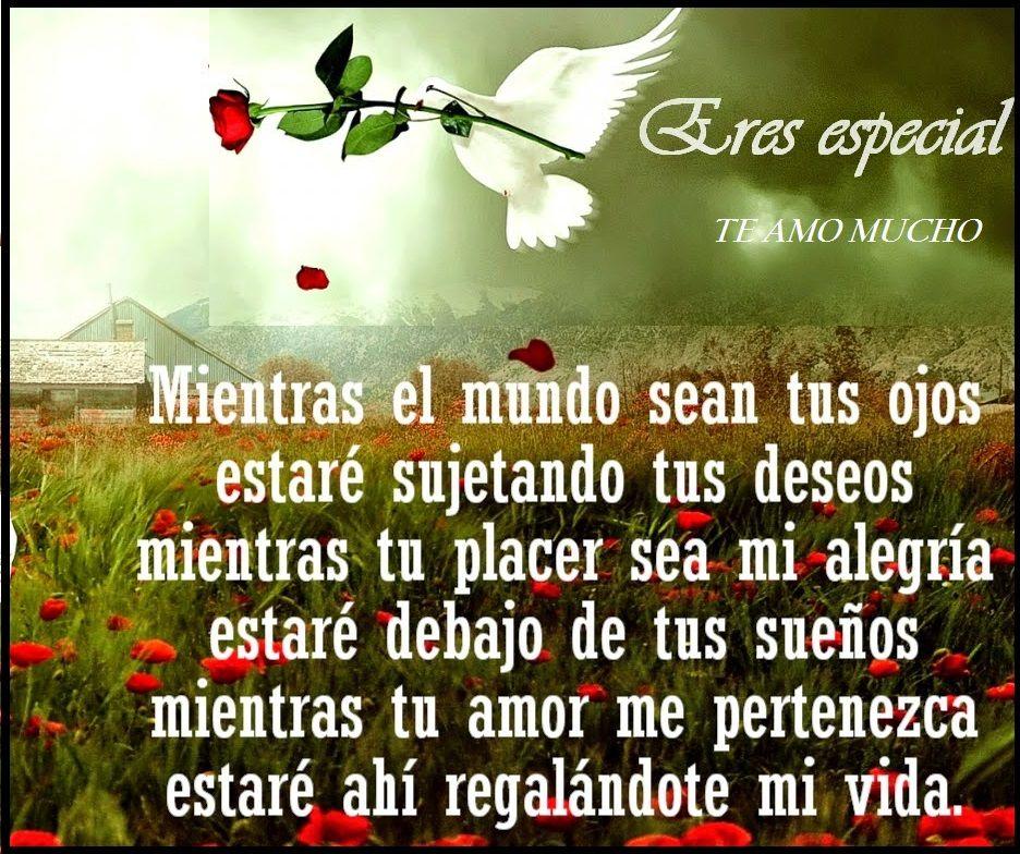 Poemas Te Amo Mucho Mi Amor Mi Vida Para Dedicar A Tu Pareja | Imagenes De