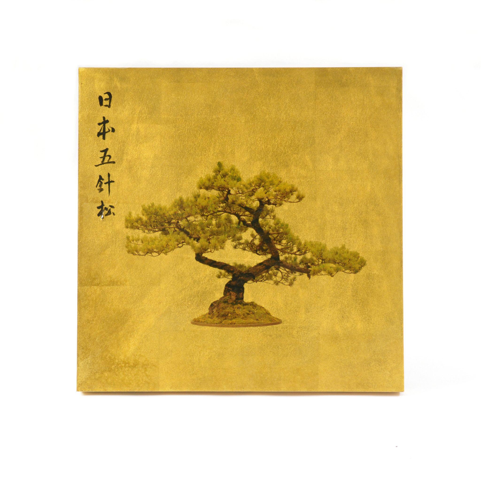 Goldleaf Chinese Bonsai Photograph: This unique photographic print ...