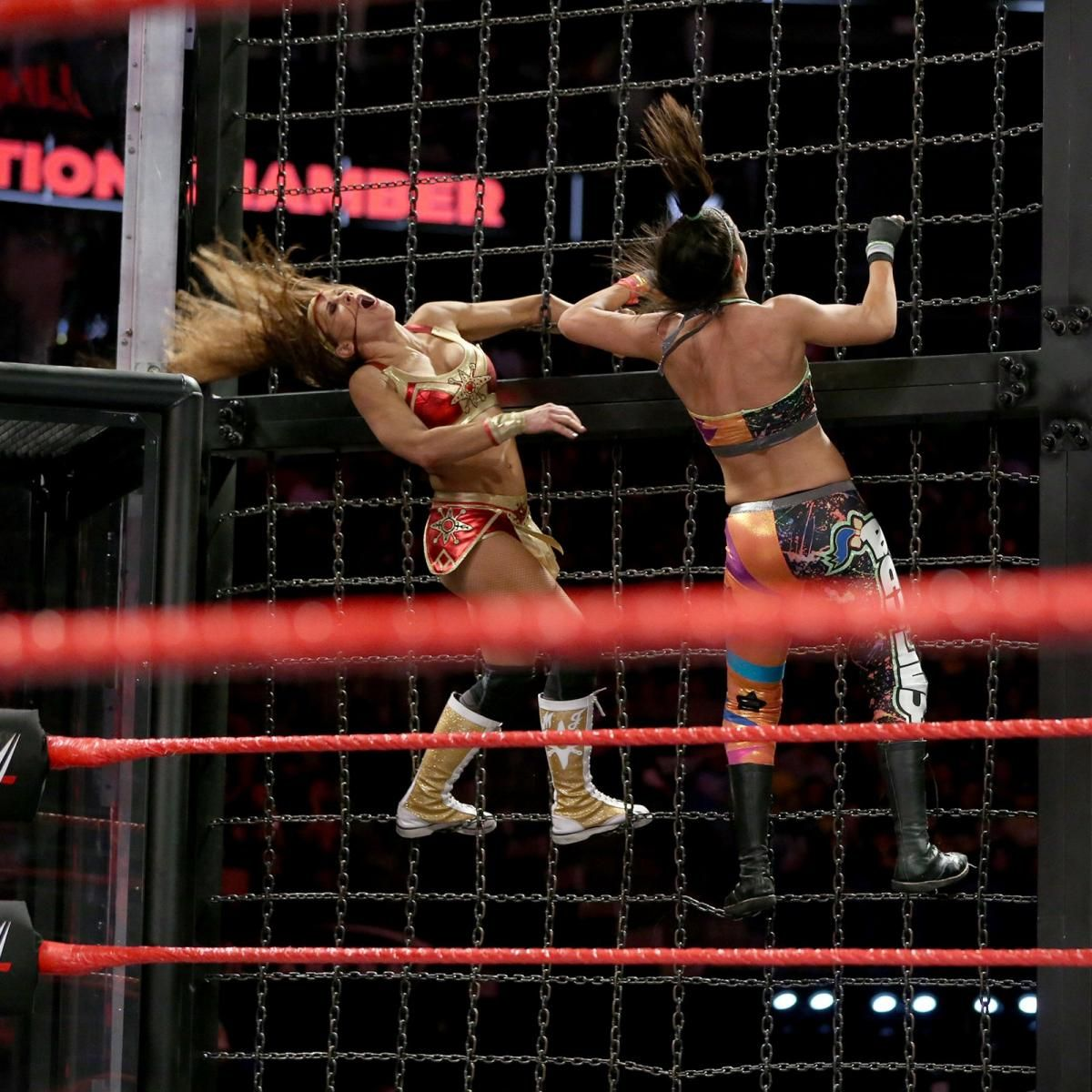 Photos Team Red Ladies Lay It All On The Line In Jaw Dropping Elimination Chamber Match Wwe Womens Women S Wrestling Mickie James