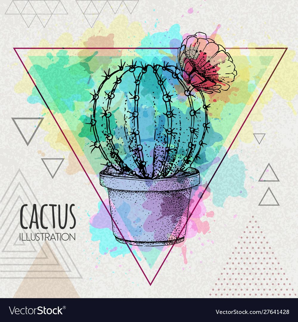 Photo of Hand drawing cactus on watercolor background Vector Image , #spon, #cactus, #dra…
