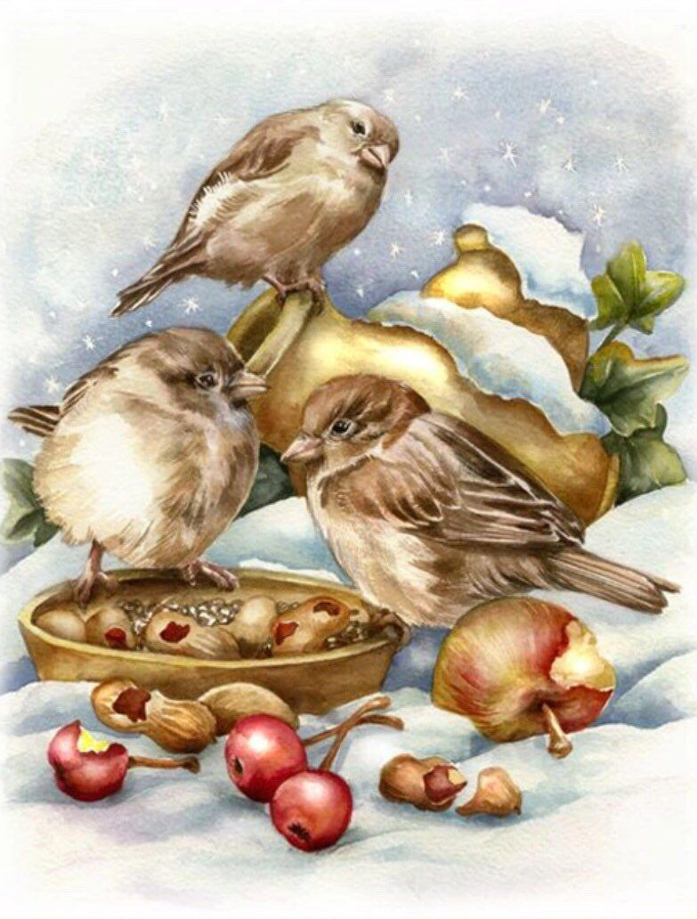 US Seller. Diamond Painting Kit Full Drill. Square Drills. Fast S&H. 50x40cm Winter Birds, Fruits, Nuts