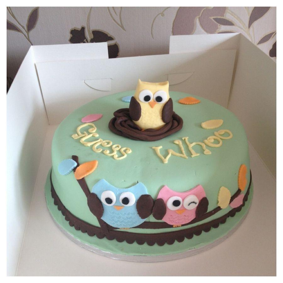 Owl Baby Shower Cake U2014 Cute Idea For Gender Revealing! Via Cakecentral.com