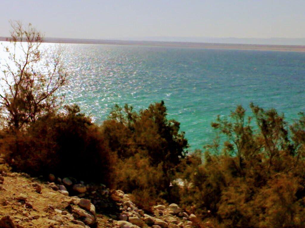 Dead Sea Jordan البحر الميت الاردن Jordan Country Photo Outdoor