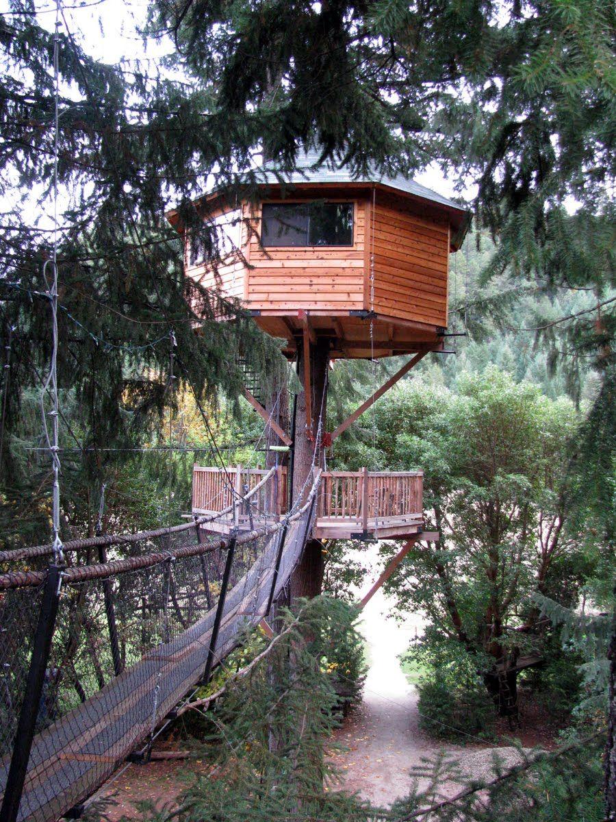 Treehouse Resort In Oregon Tree House That Matt Built I