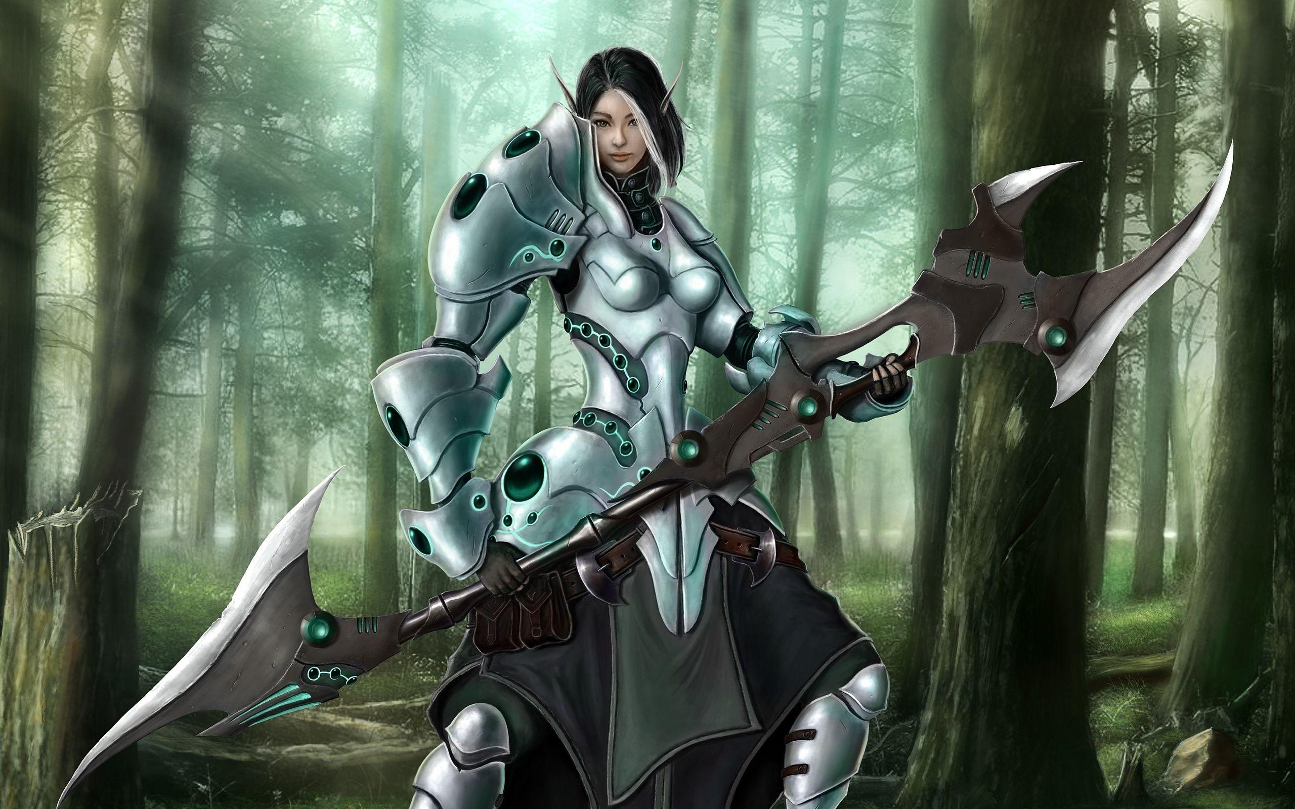 warrior elf desktop wallpapers - photo #8
