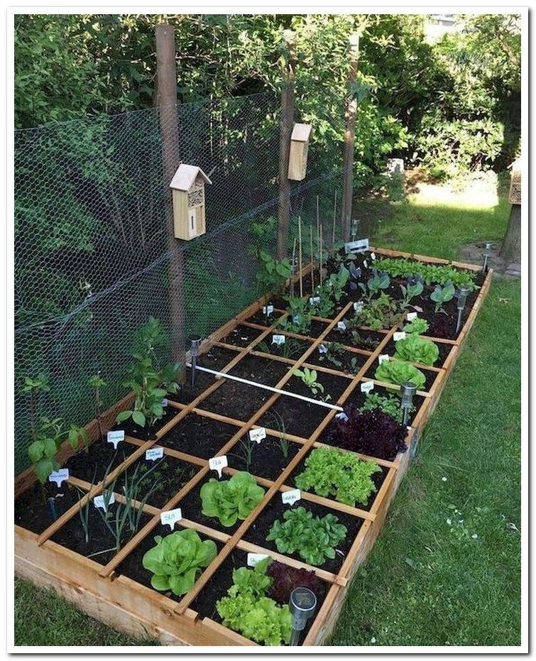 16 Common Mistakes In Raised Bed Gardening Vegetable Garden For
