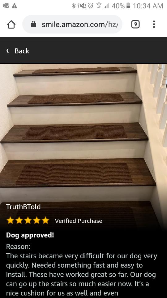 Edenproducts Patent Pending Non Slip Carpet Stair Treads Set Of 15 Rug Non Skid Runner For Grip And Beauty Safety Sl In 2020 Carpet Stair Treads Stairs Stair Treads