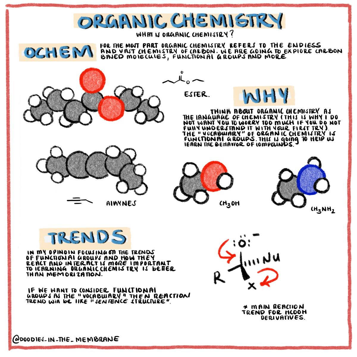 Photo of Introduction to Organic Chemistry – Doodles in the Membrane