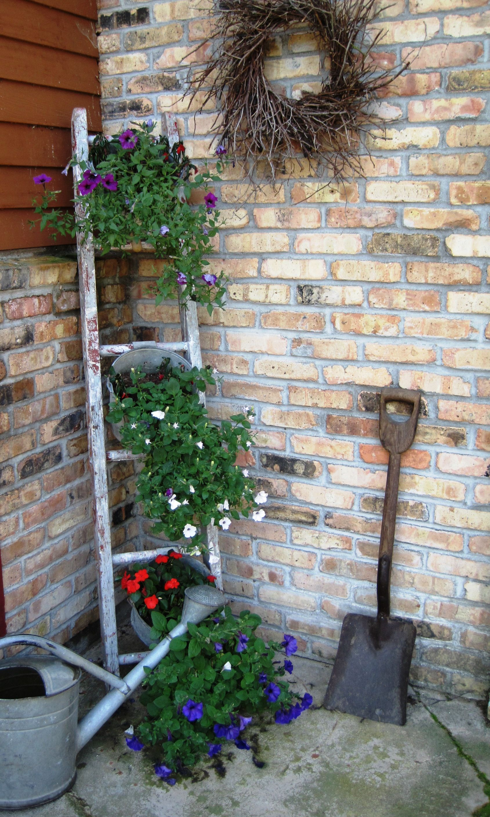 Best Love Using Ladders With Buckets Filled With Flowers 640 x 480